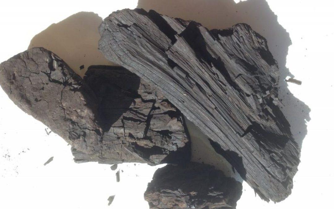 Początki Górnictwa węglowego w Wielkopolsce